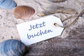 Label sand and shells with lettering book now Royalty Free Stock Photos