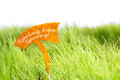 Label With Spring Has Sprung On Green Grass Royalty Free Stock Photo