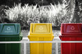 Labeled recycle bins, selective color Royalty Free Stock Photo