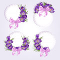 Labels with purple crocus flowers for your on a light background Stock Photos