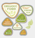 Labels on the theme of ecology fresh food vegetarian natural organic vector icons Royalty Free Stock Photo
