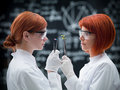 Laboratory comparative analysis side view of two women scientists in a chemistry lab compared between pills and plants Stock Photography