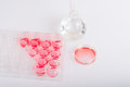 Laboratory dishes for biochemical experiment well plate and petri dish with cell culture labware Stock Photos