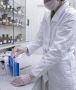 Laboratory a woman working in a medical lab Stock Photography
