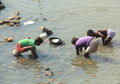 Labour in india a group of collect some money ganga river at haridwar uttarakhand Stock Images