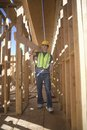 Labourer Carrying Plank Of Wood Royalty Free Stock Photo