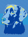 Labrador Dog Pop Art Style Royalty Free Stock Image