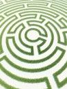 Labyrinth grass Royalty Free Stock Photo
