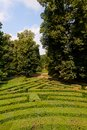 Labyrinth of Love park Villa Pisani, Stra, Veneto, Italy