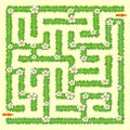 Labyrinth. Maze game for kids. Green grass and chamomiles Royalty Free Stock Photo