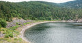 Lac noirc lake named noir in the vosges mountains near orbey in alsace france Stock Image