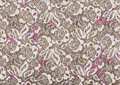 Lace background. Royalty Free Stock Photo