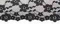 Lace background black fine floral texture isolate on white Royalty Free Stock Photography