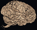 Lace brains Royalty Free Stock Photo