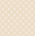 Lace dotted bridal white veil Royalty Free Stock Photography