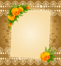 Lace ornaments and flowers Royalty Free Stock Photo