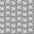 Lace with seamless floral pattern Stock Photos