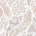 Lace vector fabric seamless pattern Royalty Free Stock Image
