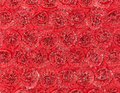 Lacework background texture or detail for Royalty Free Stock Photos