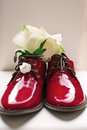 Lacquer red shoes over white Royalty Free Stock Images