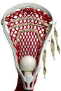 Lacrosse Head with a Grey Ball Royalty Free Stock Photography