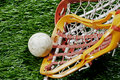Lacrosse race for the ball Royalty Free Stock Images