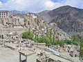 Ladakh, India, kind on Hamayuru Royalty Free Stock Photo