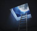 Ladder leading to a night sky moon