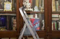 Ladder In A Library Royalty Free Stock Photo