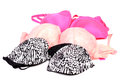 Ladies bras beautiful shot of different kind of on white background Royalty Free Stock Photo