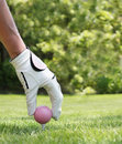 Picture : Ladies golf lip  close