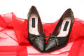 Ladies shoes on red cloth and white background Royalty Free Stock Image