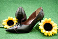 Ladies shoes with sunflowers on green background Royalty Free Stock Images