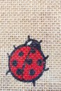 Lady bug canvas Stock Photography