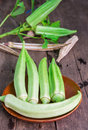Lady Fingers or Okra Royalty Free Stock Photo