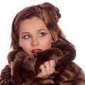 Lady in a fur coat. Stock Image