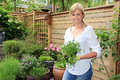 Lady gardener in the garden.. Royalty Free Stock Photo