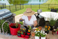 Lady gardener potting up new plants on a patio high angle view of wearing wide brimmed straw sunhat an outdoor at the counter in Royalty Free Stock Photo