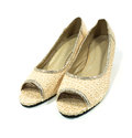 Lady lacework shoe on white Royalty Free Stock Image