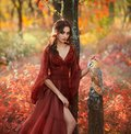 Lady in a long light summer red burgundy dress with an open leg, and barn owl