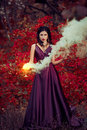 Lady in a luxury lush purple dress swirls the smoke fantastic shot fairytale princess walking the autumn forest Stock Photography