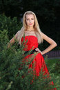 Lady in red outdoors blond park Royalty Free Stock Photography