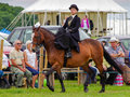 Lady riding side saddle a in the class at the north lonsdale agricultural show Stock Photography