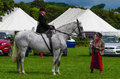 Lady riding side saddle a at the north lonsdale agricultural show Royalty Free Stock Images