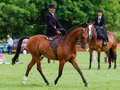 Lady riding side saddle a at the north lonsdale agricultural show Stock Image