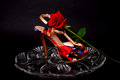 Lady s shoe and rose isolate over black on crystal Stock Image
