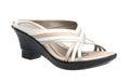 Lady shoe Stock Photography