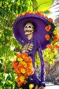 Lady skeleton for halloween scary female decoration Royalty Free Stock Photography