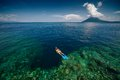 Lady snorkeling over reef wall young the in the area of the island of bunaken sulawesi indonesia Stock Photos