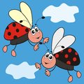 Ladybirds black and red ladybug in the background is the sky and clouds Stock Photo